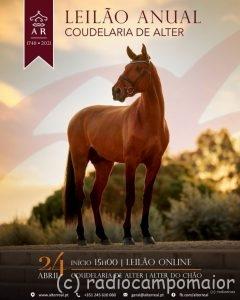 Leilao-Coudelaria-Alter