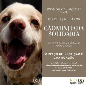 CaoMinhadaCampoMaior