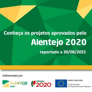 CCDR Alentejo 2020 2 trim